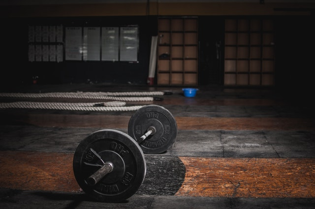 Benefits of Incorporating a Workout App into Your Fitness Regime